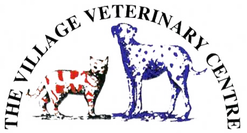 Village Vets In Chandlers Ford